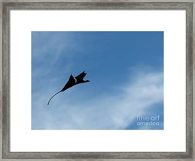 Framed Print featuring the photograph Dragon In Flight by Jane Ford