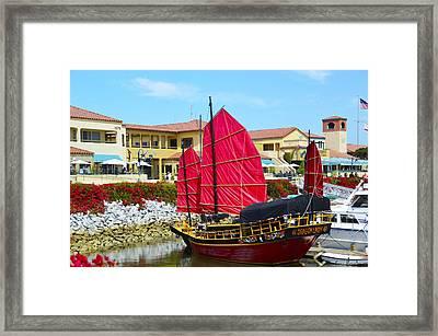 Dragon Lady At Venture Harbor Framed Print by Barbara Snyder