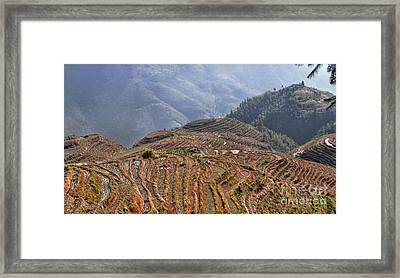Dragon S Backbone Rice Terraces Framed Print