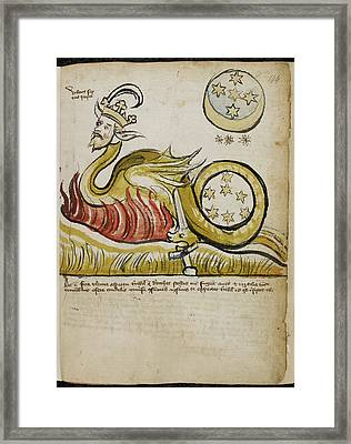 Dragon With The Head Of King Framed Print