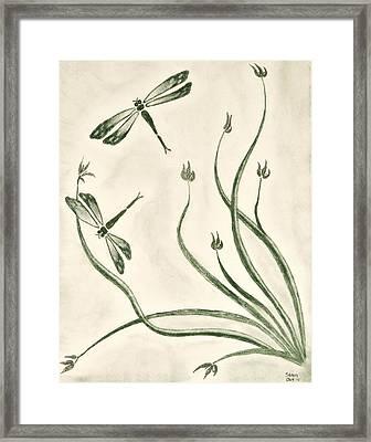 Dragonflies Framed Print by Sean Mitchell