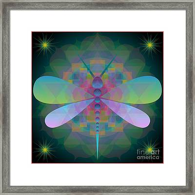 Dragonfly 2013 Framed Print