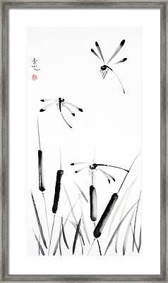 Dragonfly Dance Framed Print by Oiyee At Oystudio