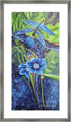 Dragonfly Hunt For Food In The Flowerhead Framed Print