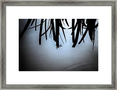 Dragonfly Silhouette Framed Print