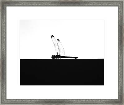 Dragonfly Silhouette Framed Print by Maggy Marsh