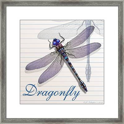Dragonfly Framed Print by WB Johnston