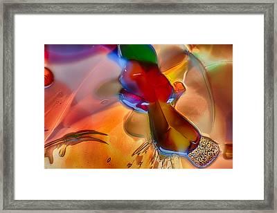 Dragonflying Framed Print by Omaste Witkowski