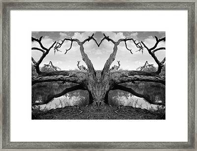 Dragonheart Framed Print