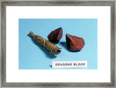 Dragon's Blood Sample Framed Print by Science Photo Library