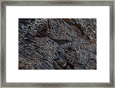 Dragonscale Framed Print