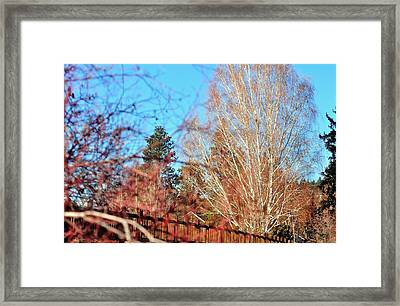 Drake Park Bridge 21655 Framed Print