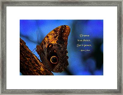 Drama Is A Choice Framed Print by Mike Flynn