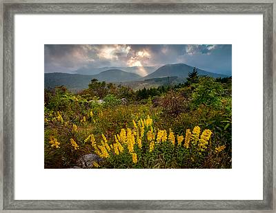 Drama On The Trail Framed Print by Rob Travis