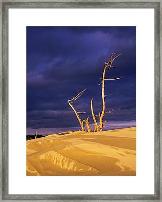 Dramatic Light Strikes The Sand Dunes Framed Print by Robert L. Potts