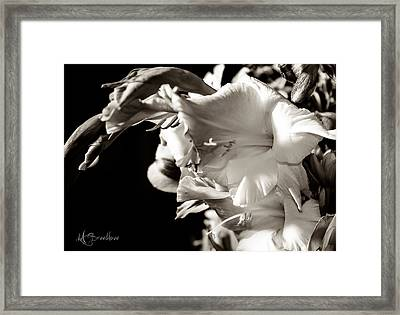 Dramatic Spring Framed Print by Lori Breedlove