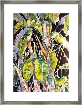 Dramatic Tropics Framed Print by Roxanne Tobaison