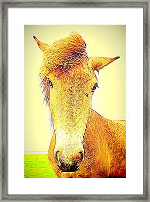 The Only Openminded Person When Everyone Else Dislike You  Framed Print