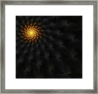 Drawn To The Light For  Andreas Maschke Framed Print by Lea Wiggins
