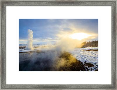 Drawn To The Sun Framed Print