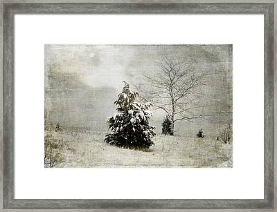 Dread Of Winter Framed Print by Julie Palencia