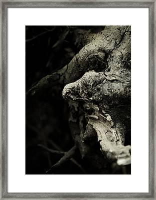 Dream Chanter Framed Print by Rebecca Sherman