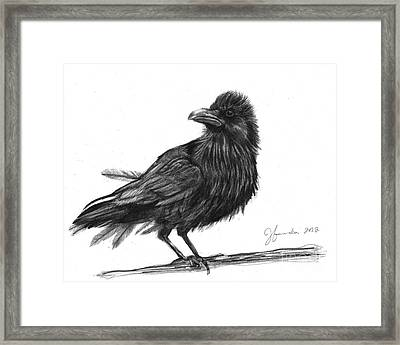 Dream Crow Framed Print by J Ferwerda