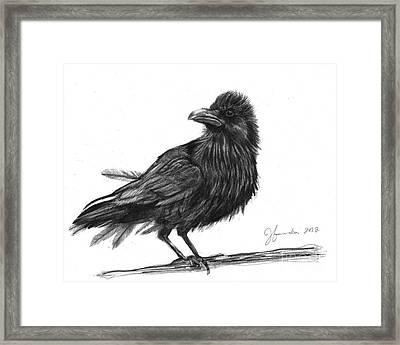 Dream Crow Framed Print by J Ferwerda