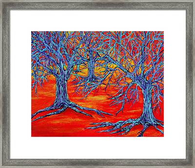 Dream Forest Framed Print by RK Hammock