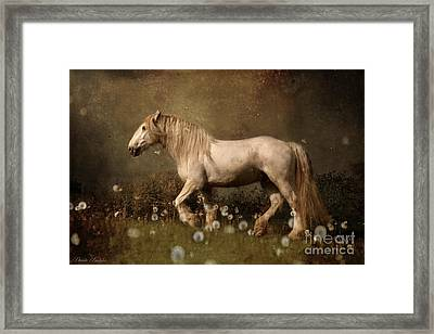 Dream Guardian Framed Print by Dorota Kudyba