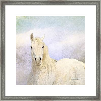 Dream Horse Framed Print
