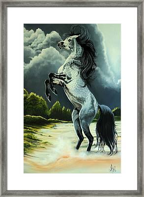 Dream Horse Series 262 - The Lost Stallion Revealed Framed Print by Cheryl Poland