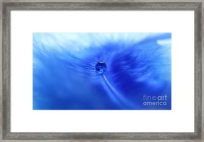 Dream In Blue Framed Print by Krissy Katsimbras