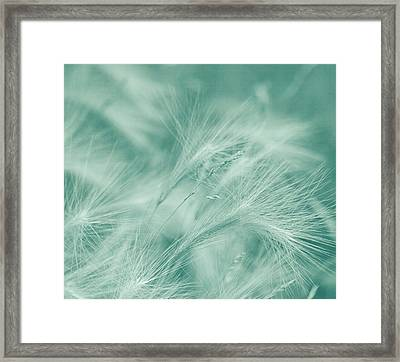 Dream Framed Print by Kim Hojnacki
