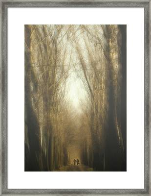 Dream Lane Framed Print