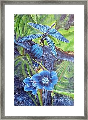 Dream Of A Blue Dragonfly Framed Print