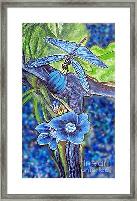 Dream Of A Blue Dragonfly Over Water Framed Print
