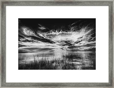 Dream Of Better Days-bw Framed Print by Marvin Spates