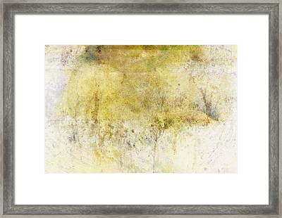 Dream Of Flying Away  Framed Print