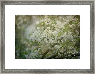 Dream Of Spring Framed Print by Arlene Carmel