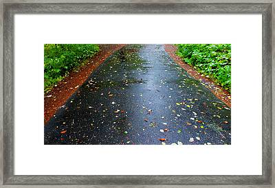 Dream Path Framed Print by Karen Horn