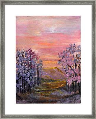 Dream Scape Framed Print by Barbara Willms