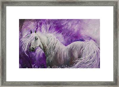 Framed Print featuring the painting Dream Stallion by Sherry Shipley