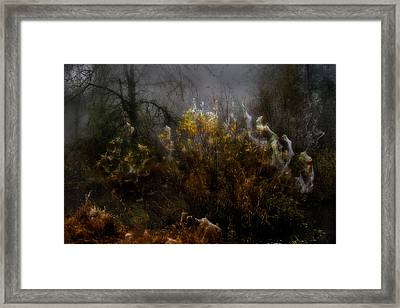 Dream Weavers Framed Print