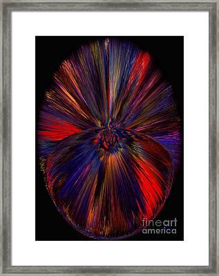 Dreamcatcher  Framed Print by Patricia Kay