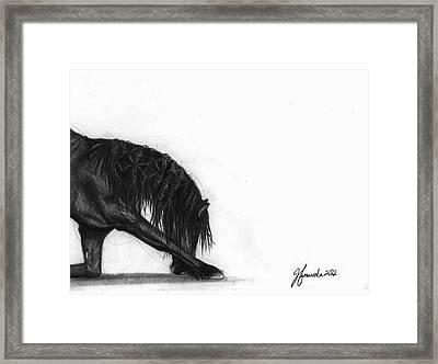 Dreamer Framed Print by J Ferwerda