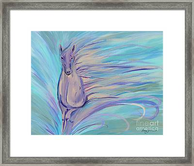 Dreamer Framed Print by Stacey Zimmerman