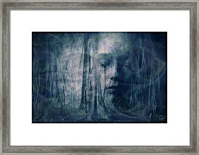 Dreamforest Framed Print