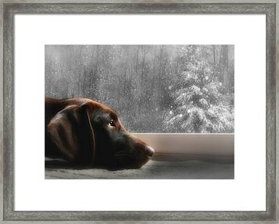 Dreamin' Of A White Christmas Framed Print by Lori Deiter