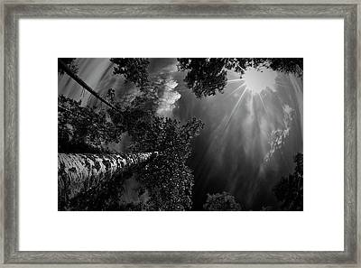 Dreaming Before The Thunder Framed Print